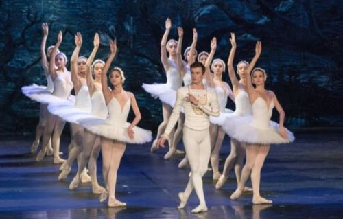 Image of Support for Swan Lake Performances